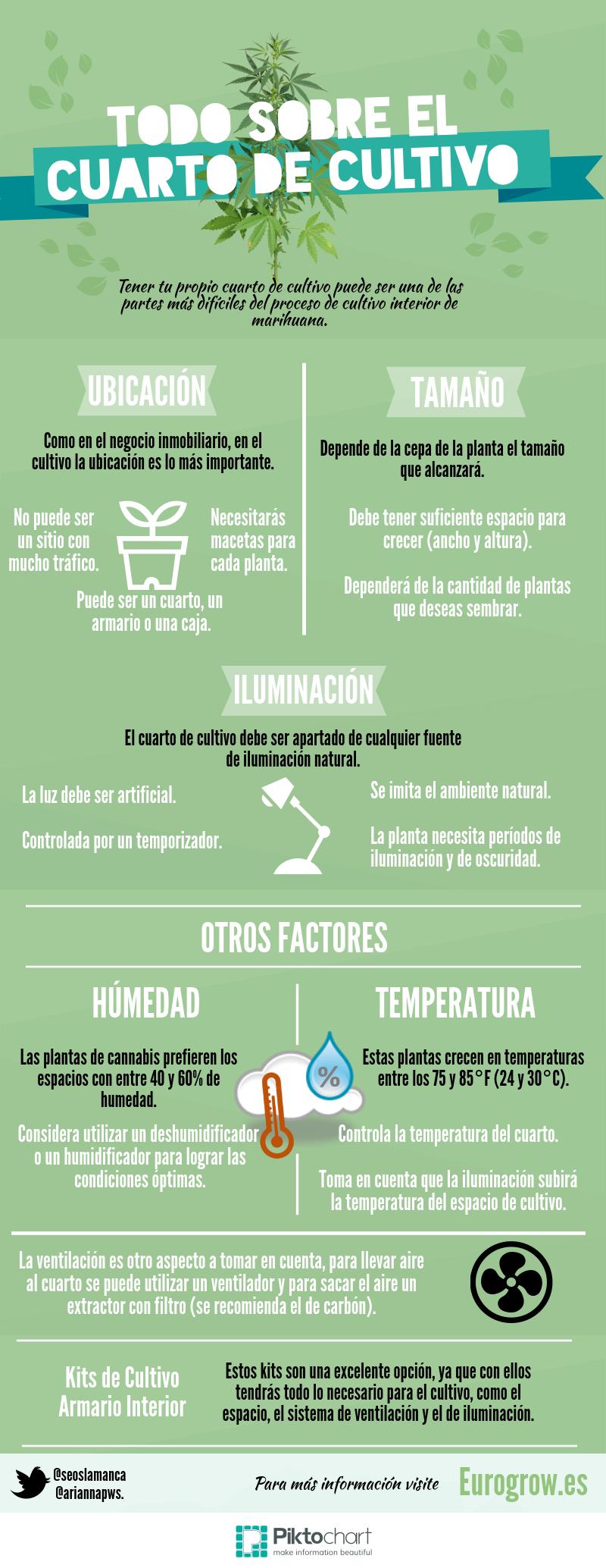 infografía cuarto cultivo